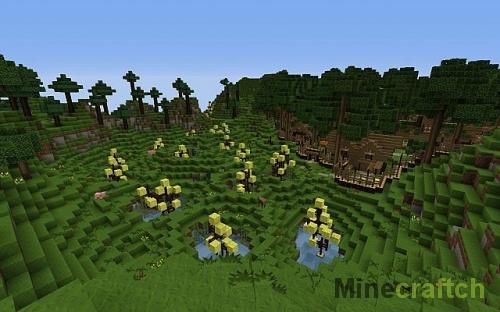 Ферма губок
