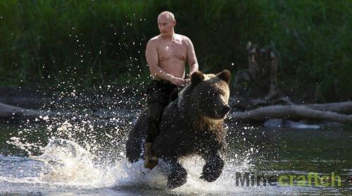 Путин верхом на медведе